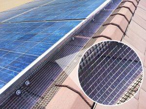 Solar Panel Bird Deterrent